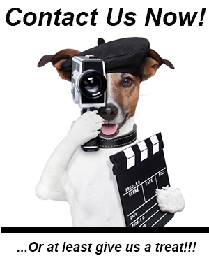 producer contact us video Production Company Miami
